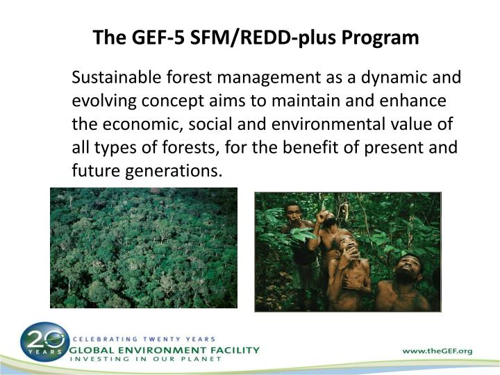 The GEF-5 SFM/REDD-plus Program