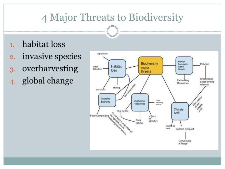 4 Major Threats to Biodiversity