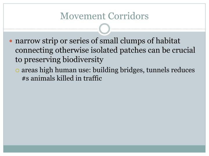 Movement Corridors