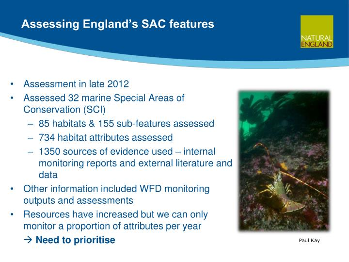 Assessing England's SAC features