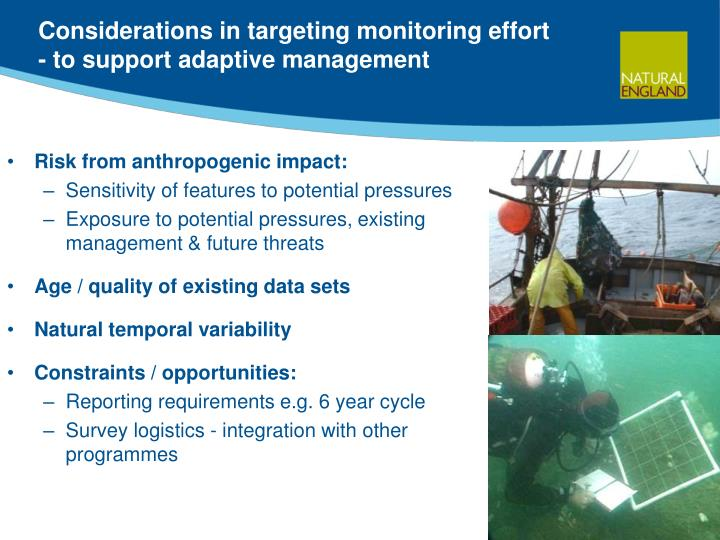 Considerations in targeting monitoring effort