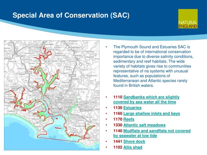 Special Area of Conservation (SAC)