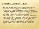 challenges for the future3