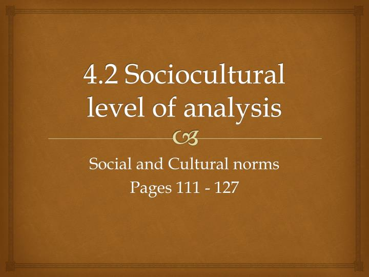 4 2 sociocultural level of analysis n.