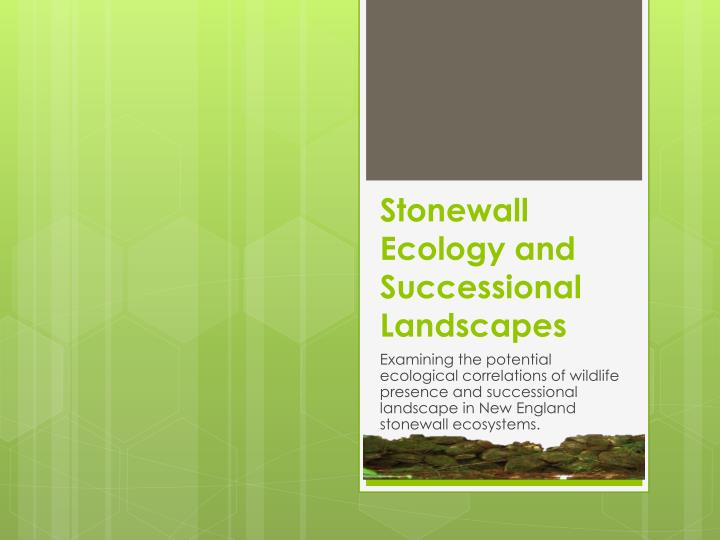 Stonewall e cology and successional l andscapes