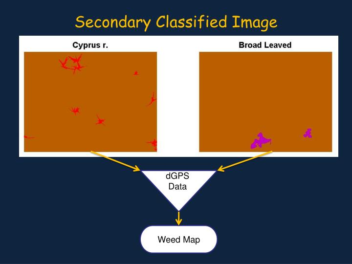 Secondary Classified Image