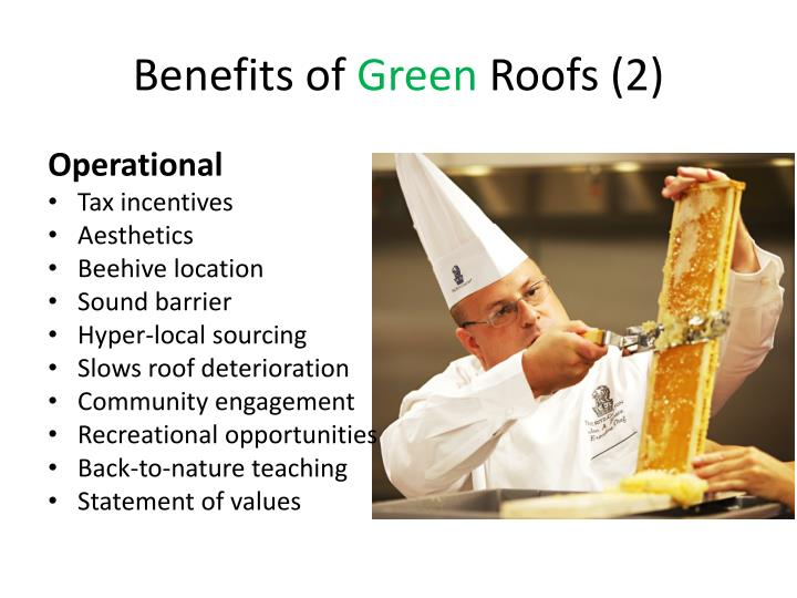 Benefits of green roofs 2