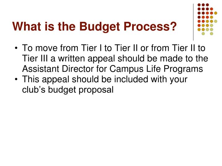 What is the Budget Process?