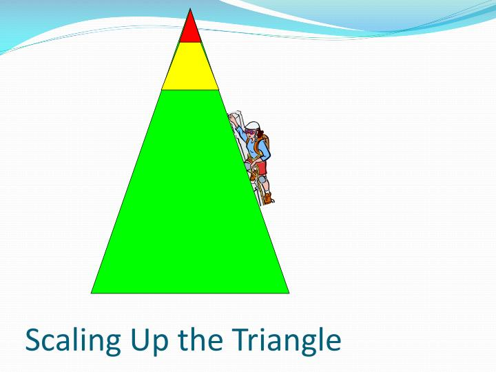 Scaling Up the Triangle