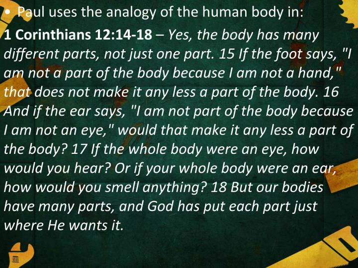Paul uses the analogy of the human body