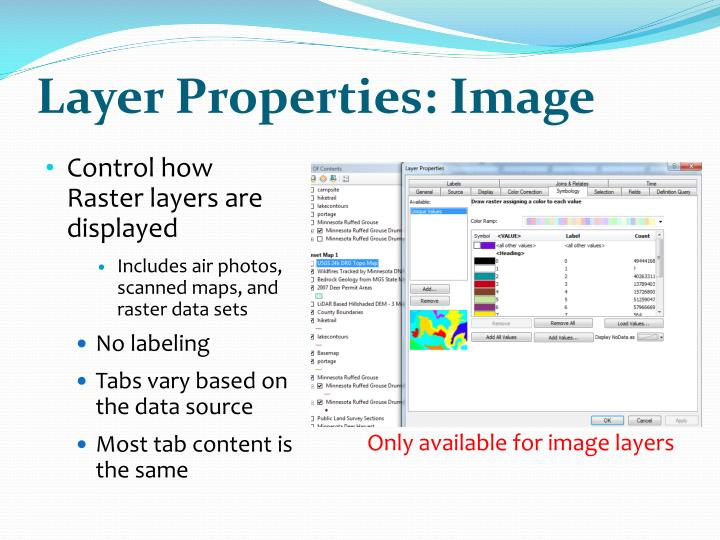 Layer Properties: Image