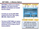 sap hana in memory options