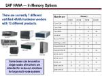sap hana in memory options1