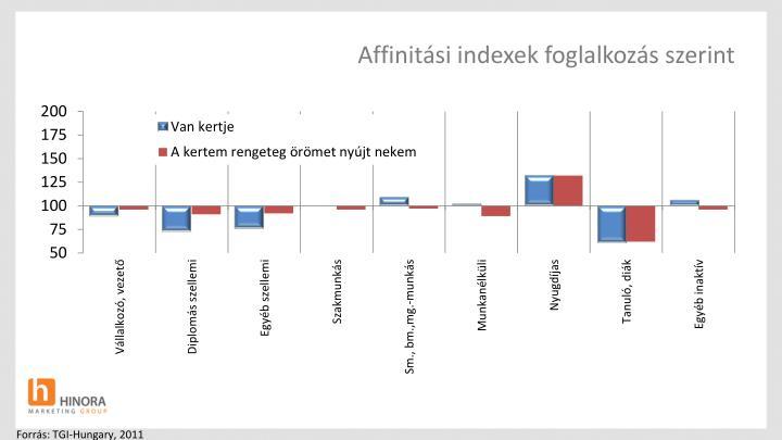 Affinitási indexek foglalkozás szerint