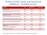 profile of child family and community wellbeing paulding county