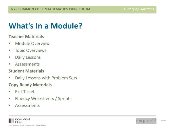 What's In a Module?