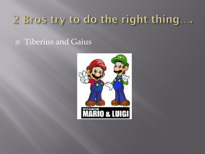 2 Bros try to do the right thing….