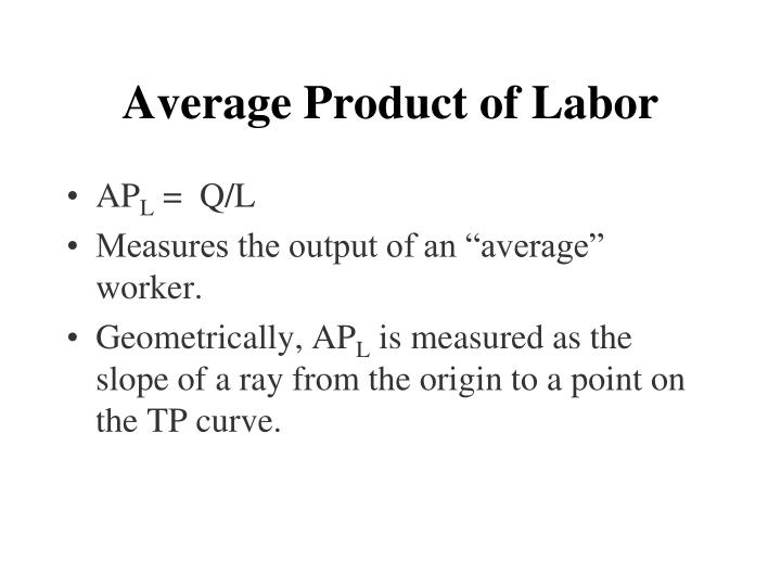 Average Product of Labor