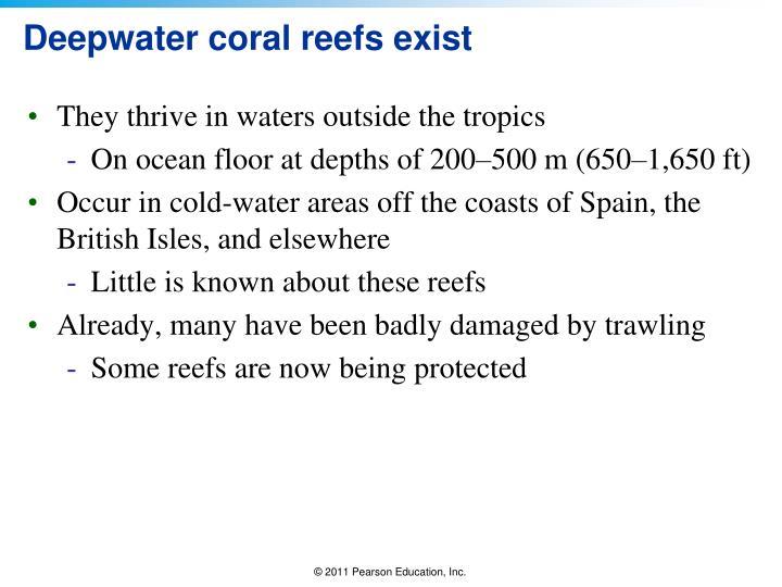 Deepwater coral reefs exist