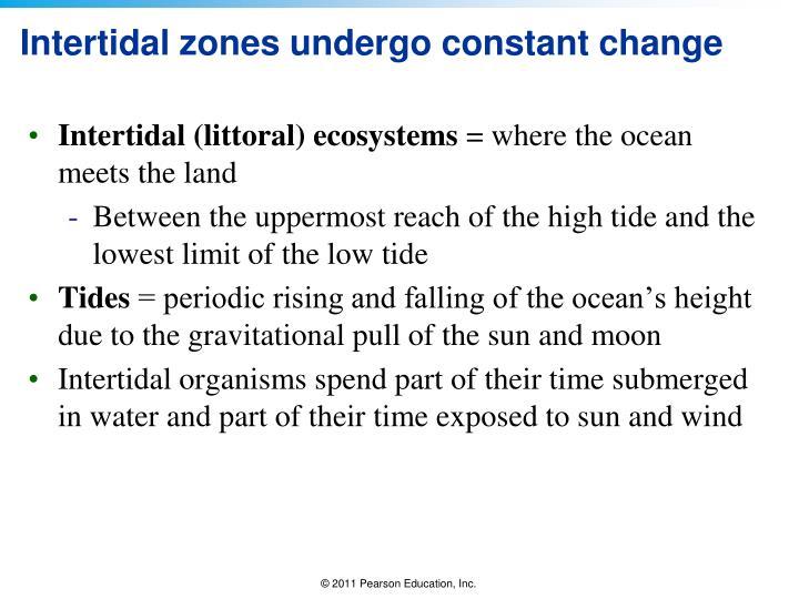 Intertidal zones undergo constant change