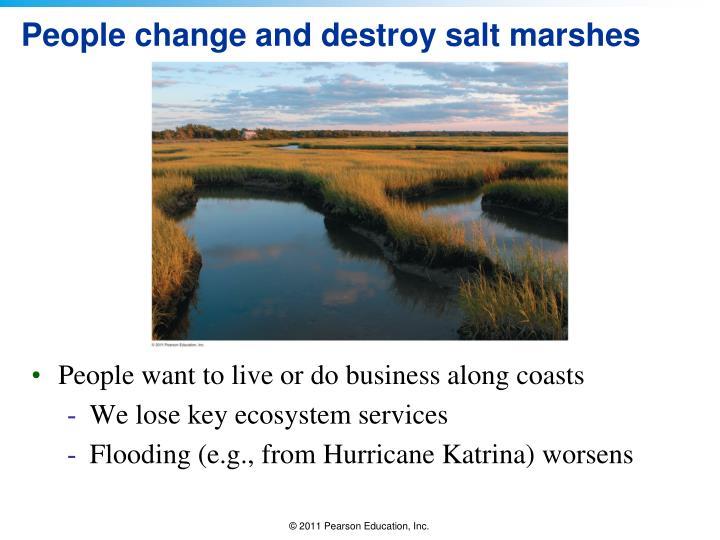 People change and destroy salt marshes
