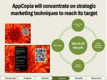 appcopia will concentrate on strategic marketing techniques to reach its target1