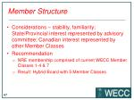 member structure1