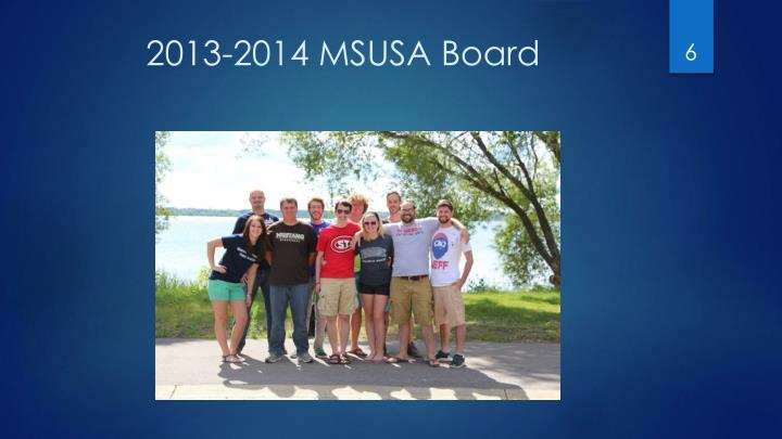 2013-2014 MSUSA Board