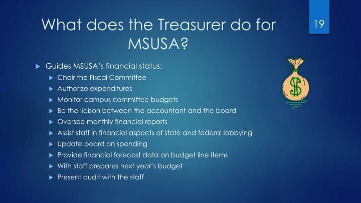 What does the Treasurer do for MSUSA?