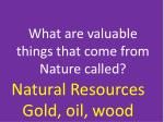 what are valuable things that come from nature called