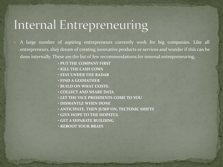 Internal Entrepreneuring