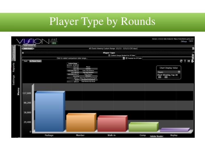 Player Type by Rounds