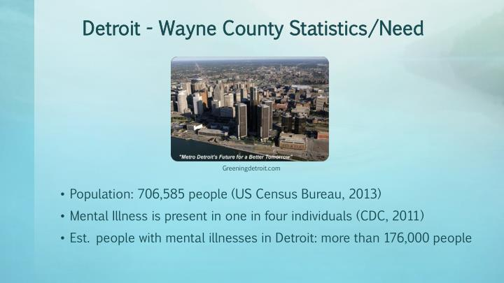 Detroit wayne county statistics need