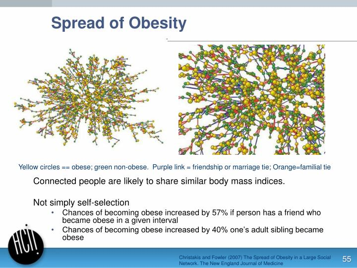 Connected people are likely to share similar body mass indices.