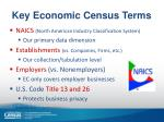 key economic census terms