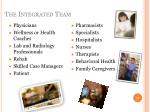 the integrated team