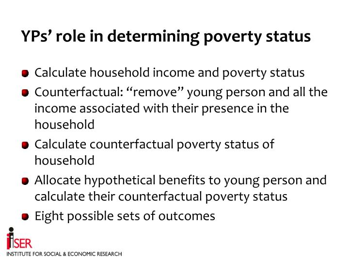 YPs' role in determining poverty status