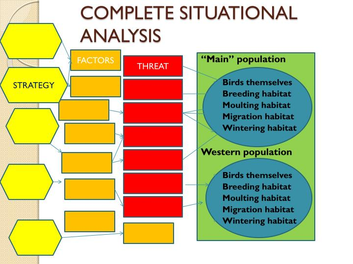 COMPLETE SITUATIONAL ANALYSIS