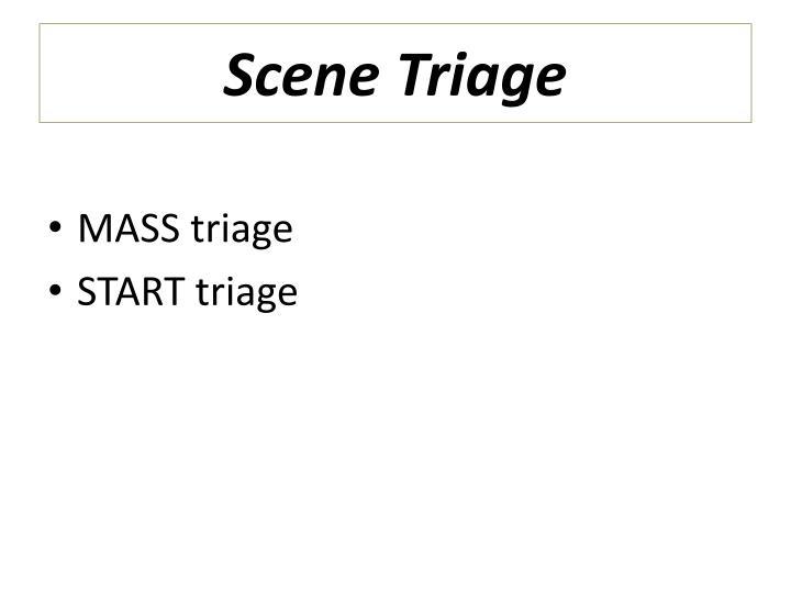 Scene Triage