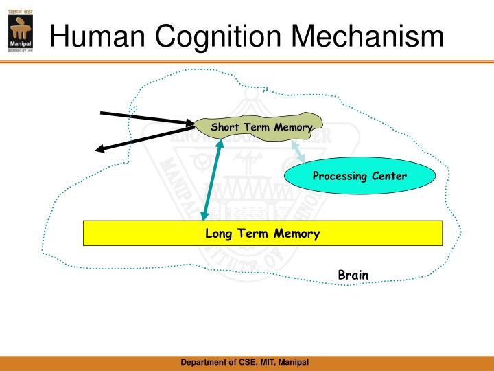 Human Cognition Mechanism
