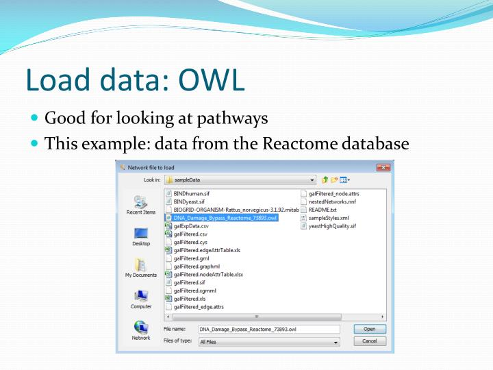 Load data: OWL