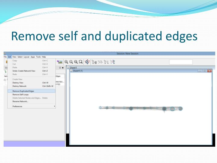 Remove self and duplicated edges