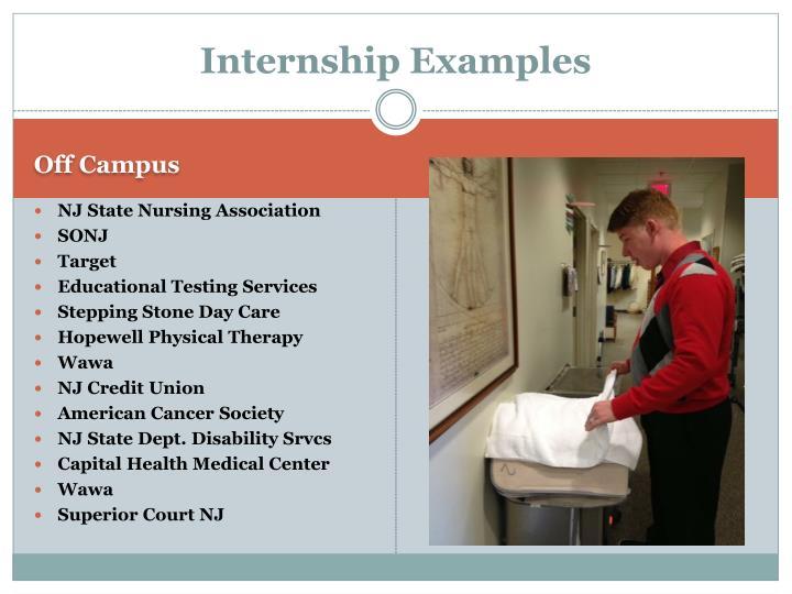 Internship Examples