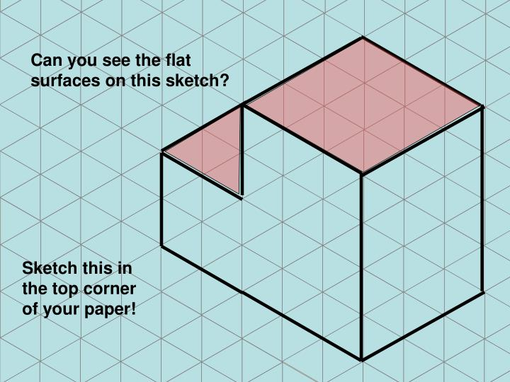 Can you see the flat surfaces on this sketch?