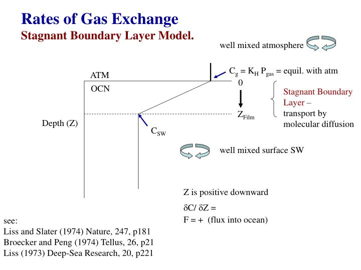 Rates of Gas Exchange