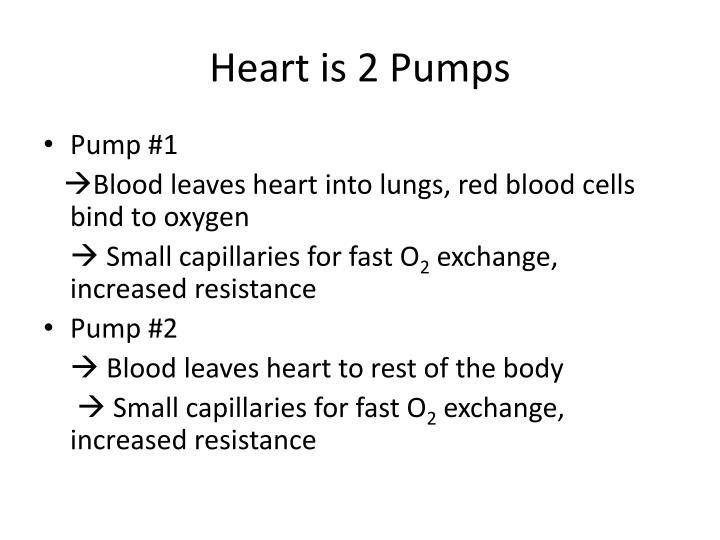 Heart is 2 Pumps