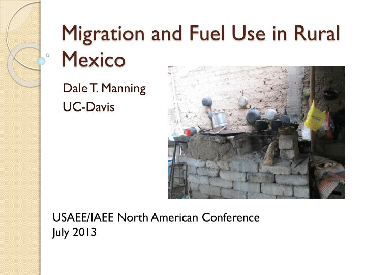 migration and fuel use in rural mexico n.