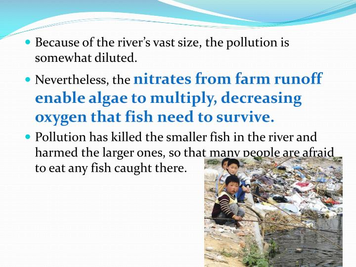 Because of the river's vast size, the pollution is somewhat diluted.