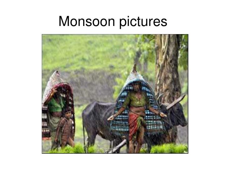 Monsoon pictures