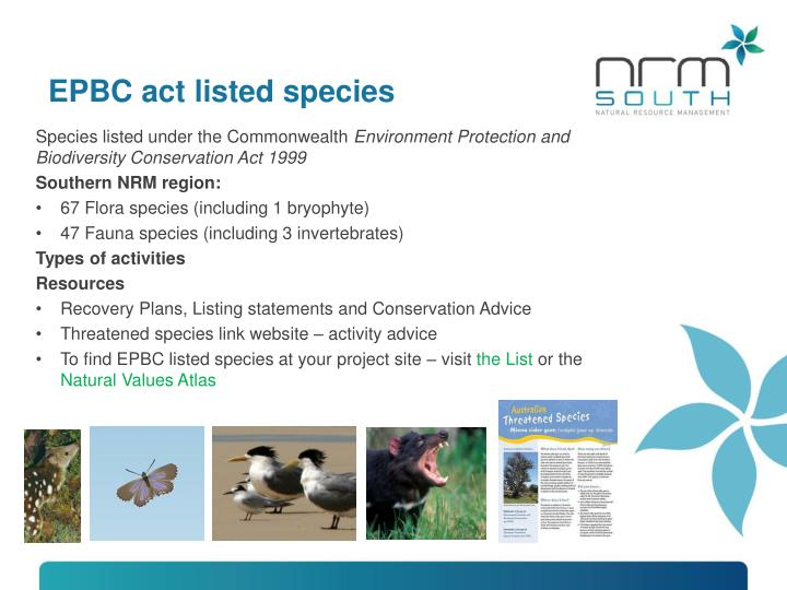 EPBC act listed species